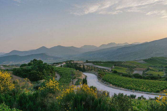 Wine Tour in North Greece