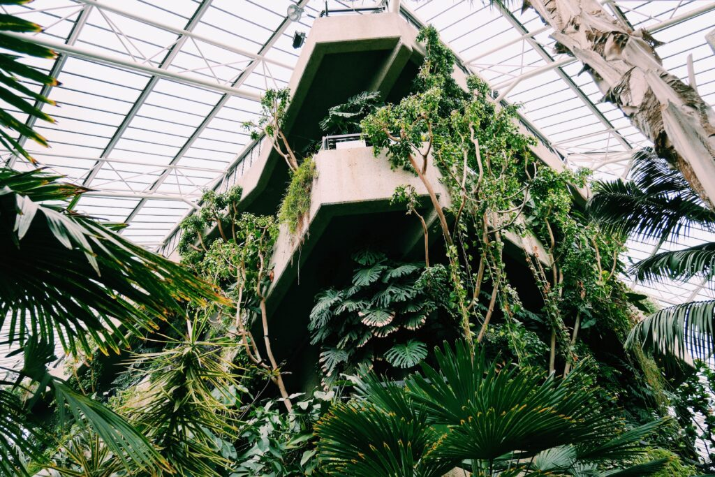 Barbican Conservatory, London. Photo by Benn McGuinness on Unsplash 2